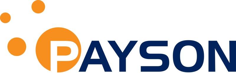Bildresultat för payson logo